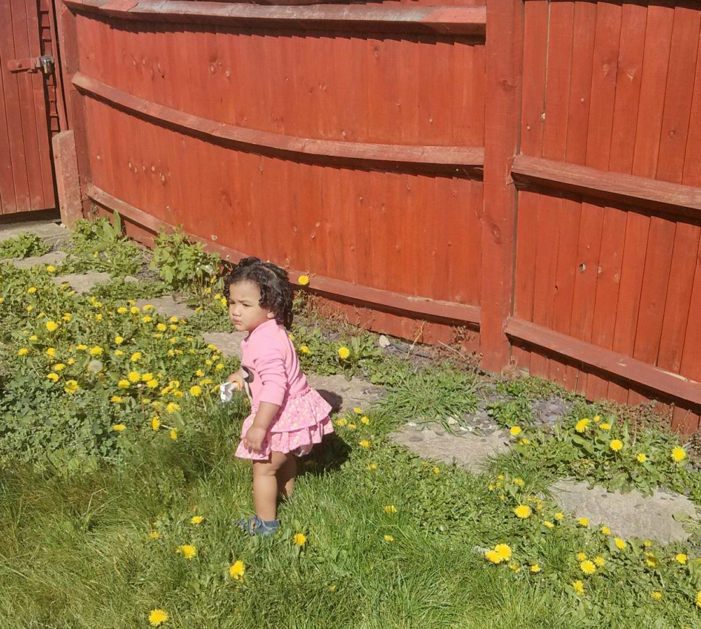 Wonderful Baby Hair Products Archives  The Tiger Tales  Blogger  With Luxury Is There Such A Thing As Ouchless Hair Maintenance For Curlyhaired Kids With Agreeable Torcher Garden Also Grosvenor Gardens Wrexham In Addition Cover For Garden And Garden Bench Bq As Well As Garden Kneeler Stool Additionally Plan A Garden From Thetigertalescouk With   Luxury Baby Hair Products Archives  The Tiger Tales  Blogger  With Agreeable Is There Such A Thing As Ouchless Hair Maintenance For Curlyhaired Kids And Wonderful Torcher Garden Also Grosvenor Gardens Wrexham In Addition Cover For Garden From Thetigertalescouk